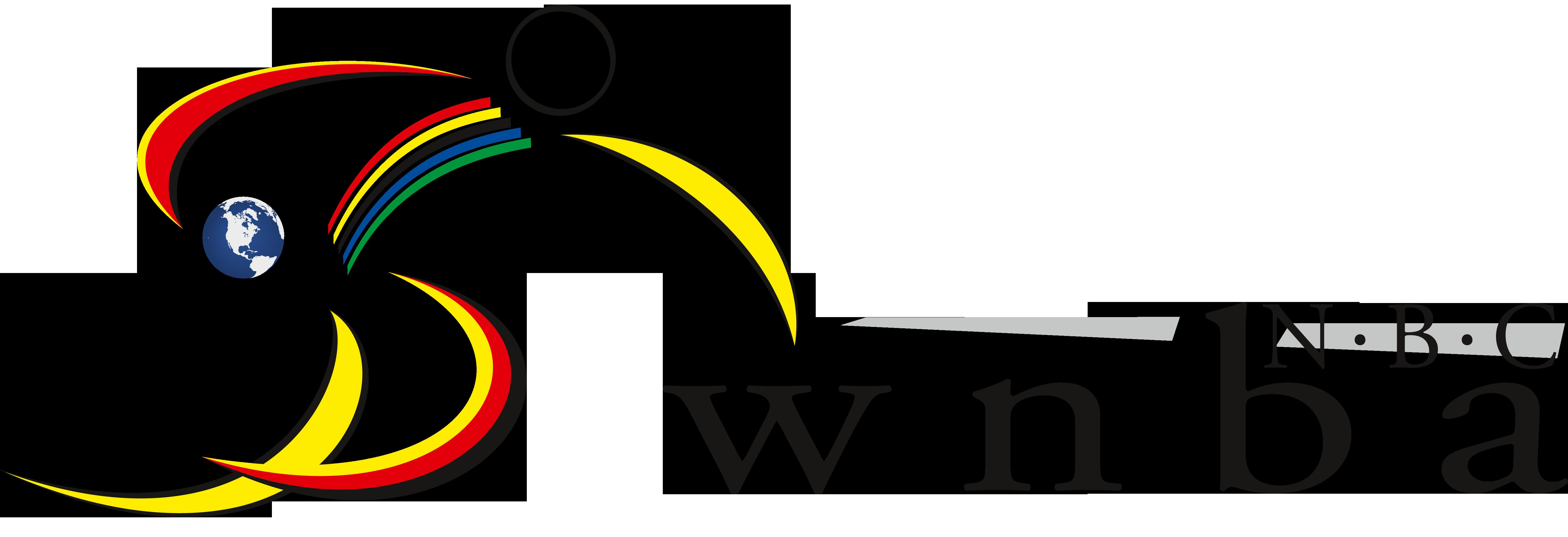 Wm logo wnba nbc